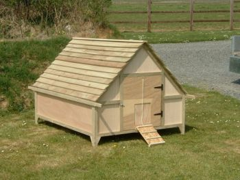 Extended Duck House