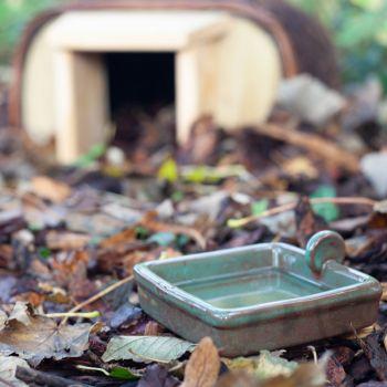 Hedgehog Water Bowl