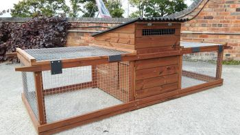 Hintsford Major Broody Coop/Cockerel Box