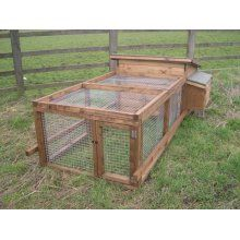 Guinea Pig Hutch and adjoining run