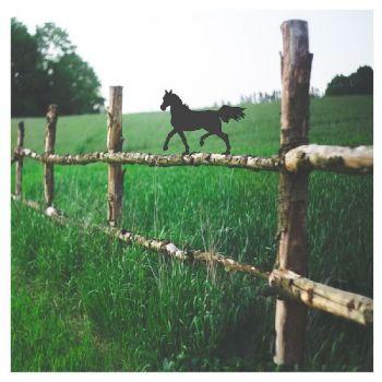 Arabian Horse Fence Topper - Large