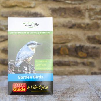 UK Garden Birds Guide